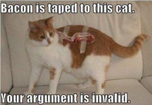 argument-is-invalid-meme-bacon-cat6